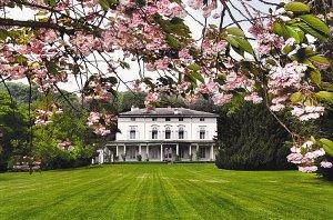 ביתו של צ'פלין שווייץ